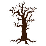 Silhouette of Halloween tree, bare spooky scary Halloween tree. Stock Photography