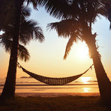 Hammock silhouette Royalty Free Stock Images