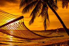 Silhouette of hammock and palm trees on a beach at sunset Stock Photography