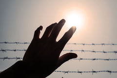 Silhouette hand extending to the sky with barbwire and sunlight, vintage tone Stock Image