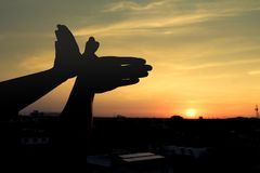 Silhouette of a hand gesture like bird flying Royalty Free Stock Photos