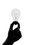Silhouette of hand holding bulb Royalty Free Stock Images