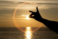 Silhouette of hand like dog on beautiful sunset or sunrise and Stock Photos