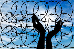 Silhouette of a hand outstretched to the sky. Concept of the refugees. Silhouette of a hand outstretched to the sun in the sky background barbed wire Stock Photography