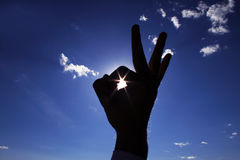 Silhouette of hands. Of the person against the sun Stock Image