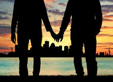 Silhouette happy gay men holding hands Stock Images