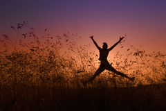 Silhouette of happy girl jumping in a meadow Royalty Free Stock Image