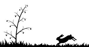 Silhouette of hare in the grass. Royalty Free Stock Photos