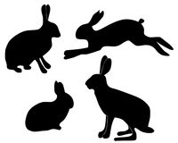 Silhouette of hares Royalty Free Stock Photos