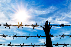 Silhouette helping hand to a refugee. Concept of refugee. Silhouette helping hand to a refugee background fence of barbed wire Royalty Free Stock Images