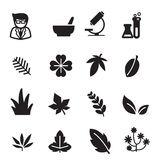 Silhouette Herb icons set Royalty Free Stock Images
