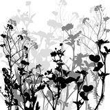 Silhouette of herbs and flowers Stock Photos