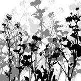 Silhouette of herbs and flowers Royalty Free Stock Image