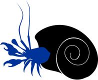 Silhouette of hermit crab Royalty Free Stock Image
