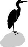 Silhouette of heron Stock Photos