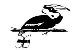 Silhouette of hornbill Stock Images