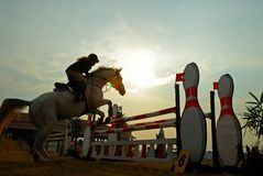 Silhouette of a horse. A show jump horse trying to overcome hurdles at Premiercup Equestrian event in Putrajaya Malaysia Stock Images
