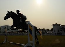 Silhouette of a horse. A silhouette of a horse jumping over hurdles Royalty Free Stock Images