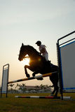 Silhouette of a horse. A silhouette of a horse jumping over hurdles Stock Photography