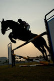 Silhouette of a horse. A silhouette of a horse jumping over hurdles Royalty Free Stock Photography