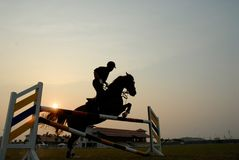 Silhouette of a horse. A silhouette of a horse jumping over hurdles Royalty Free Stock Image