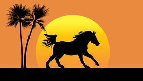 Silhouette of a horse galloping against setting sun Stock Image