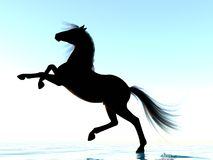 Silhouette of a horse. The image of a silhouette of a horse 3D illustration Stock Image