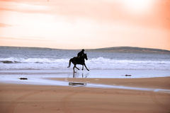 Silhouette of a horse and rider galloping Stock Images