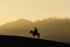 Silhouette of Horse Riding at Mount Bromo in East Java, Indonesi Royalty Free Stock Photography