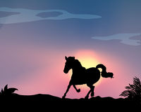 Silhouette horse Stock Photography