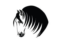 Silhouette of a horse's head. Stencil a horse's head on a white background Royalty Free Stock Photos