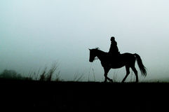 Silhouette of horse with woman Royalty Free Stock Image