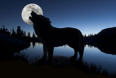 Silhouette of Howling Wolf. Against forest skyline, still lake, and full moon