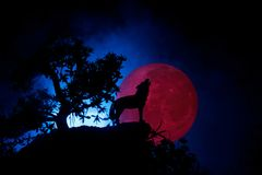Silhouette of howling wolf against dark toned foggy background and full moon or Wolf in silhouette howling to the full moon. Hallo. Ween horror concept Royalty Free Stock Image
