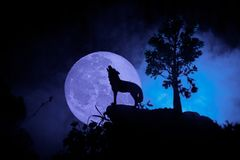 Silhouette of howling wolf against dark toned foggy background and full moon or Wolf in silhouette howling to the full moon. Hallo. Ween horror concept Stock Photos