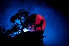 Silhouette of howling wolf against dark toned foggy background and full moon or Wolf in silhouette howling to the full moon. Hallo royalty free stock photography
