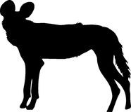 Silhouette of a hungry and nervous wild dog. Hand drawn vector illustration isolated on white background Stock Photography