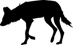Silhouette of a hungry and nervous wild dog. Hand drawn vector illustration isolated on white background Royalty Free Stock Photo