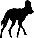Silhouette of a hungry and nervous wild dog. Hand drawn vector illustration isolated on white background Stock Photo