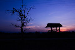 Silhouette of a hut and tree at sunset in Chiang rai, Thailand Stock Image