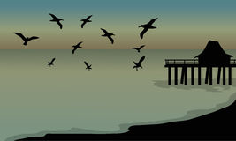 Silhouette of huts and bird at the beach Stock Image