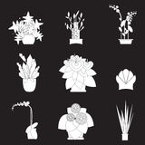 Silhouette icons of houseplants, indoor and office plants in pot. Royalty Free Stock Photos