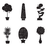 Silhouette icons of houseplants, indoor and office plants in pot. Stock Photography