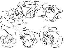 Silhouette of illustrated roses Stock Photos