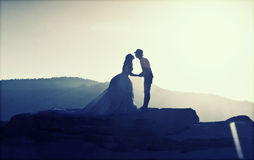 Silhouette image of a bride and groom Royalty Free Stock Images