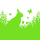 Spring background with Easter bunny Royalty Free Stock Photos