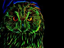 Silhouette of an image of an owl in neon light Stock Photos