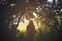 Silhouette image of a woman tourist walking and trekking in forest Royalty Free Stock Images