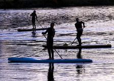 Paddle Boarders. Silhouette images of Paddle Boarders on River Tyne, at Newburn, Newcastle upon Tyne, England, UK. At sunset royalty free stock photography