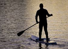 Paddle Boarders. Silhouette images of Paddle Boarders on River Tyne, at Newburn, Newcastle upon Tyne, England, UK. At sunset royalty free stock images
